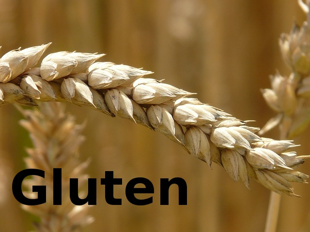 psoriasis caused by gluten