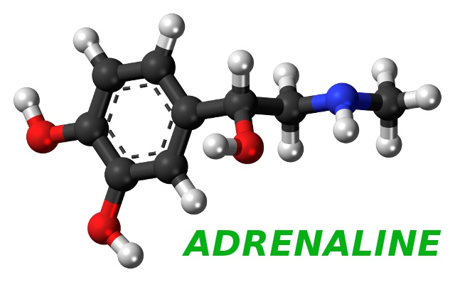 Adrenaline, blood flow and psoriasis.