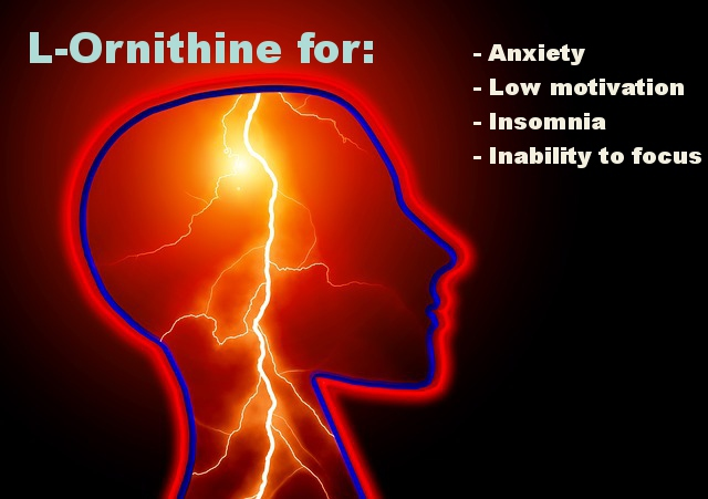 L-Ornithine may help anxiety, insomnia, inability to focus and psoriasis of course.