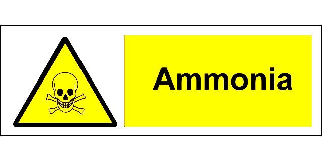 ammonia_psoriasis