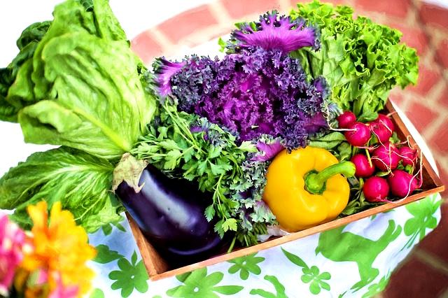 vegeables_fresh