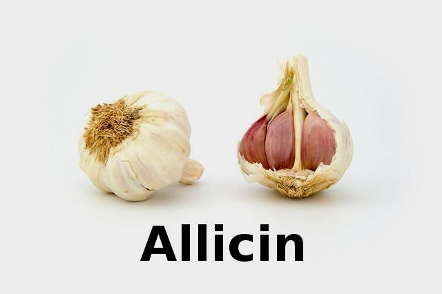 garlic_allicin_psoriasis