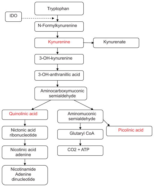 Tryptophan metabolites present in inflammation